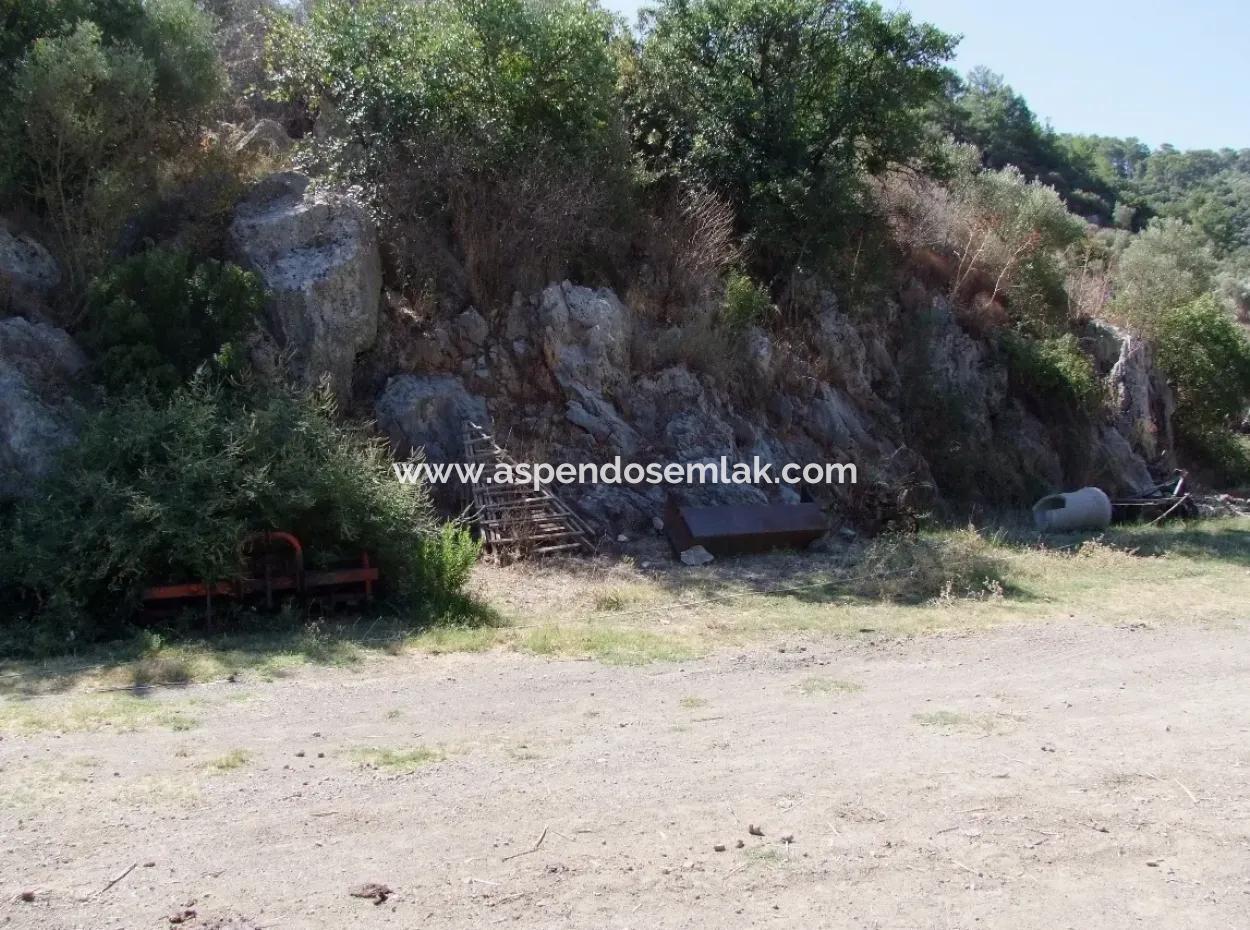 Land-Handlung Zum Verkauf Zum Verkauf In Mergenli Mergenli 3076M2 In Oriya