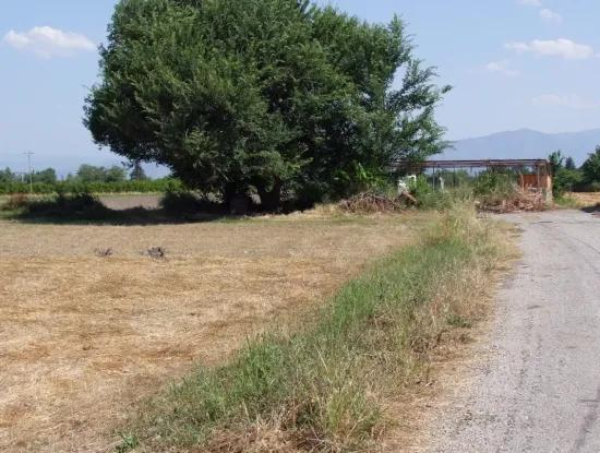Okcular 540M2 Eck-Grundstück Zum Verkauf In Dalyan Haus Zum Verkauf In Bogenschützen