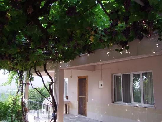 Zum Verkauf In Dalaman Zu Verkaufen Freistehendes Haus Zum Verkauf In Tuzla Gurkoy Koyevi