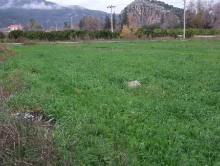 Gulpinar Dalyan Dalyan Zum Verkauf In 1002M2 Grundstück Für Verkauf Zum Verkauf Eckstein