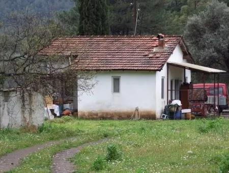 Freistehende Villa Zum Verkauf In Bauernhaus Zum Verkauf In Ekincik Edincik 9173M2