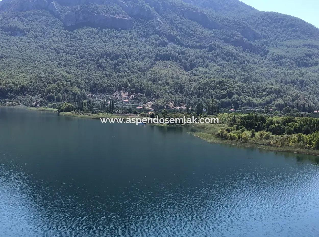 Sultaniye Land For Sale Near 10577M2 Lake Land For Sale
