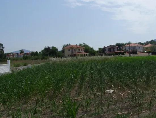Near The Center Of The Plot For Sale, Plot 514M2 Land For Sale