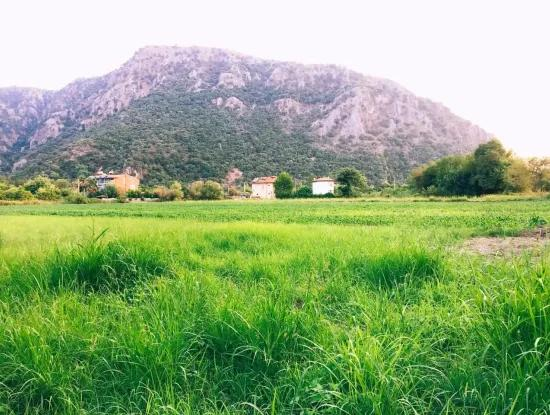 Archer Archers Are The Cornerstone Plot For Sale Plot For Sale For Sale In Marmarli 2081M2