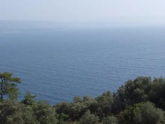 5000M2 Plot Of Land For Sale In Akyaka With Full Sea View House For Sale Kentucky
