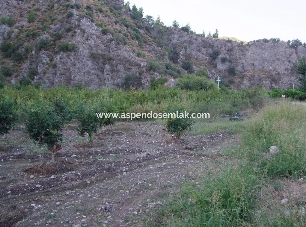 Mergenlide Satılık Nar Bahçe Ortaca Mergenlide Satılık Arsa