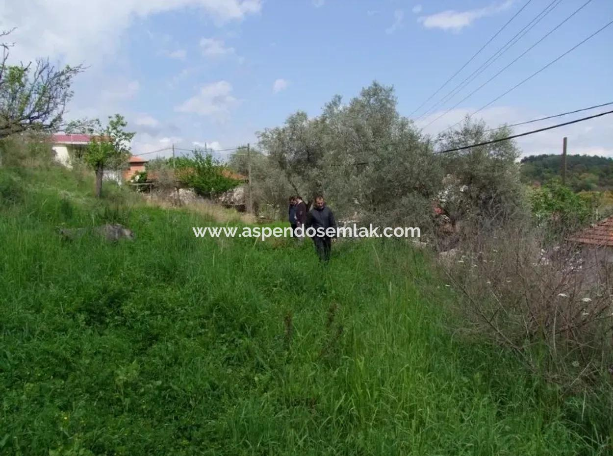 Ula Akyaka Ataköy De Doğa Manzaralı Satılık Emlak Arsa
