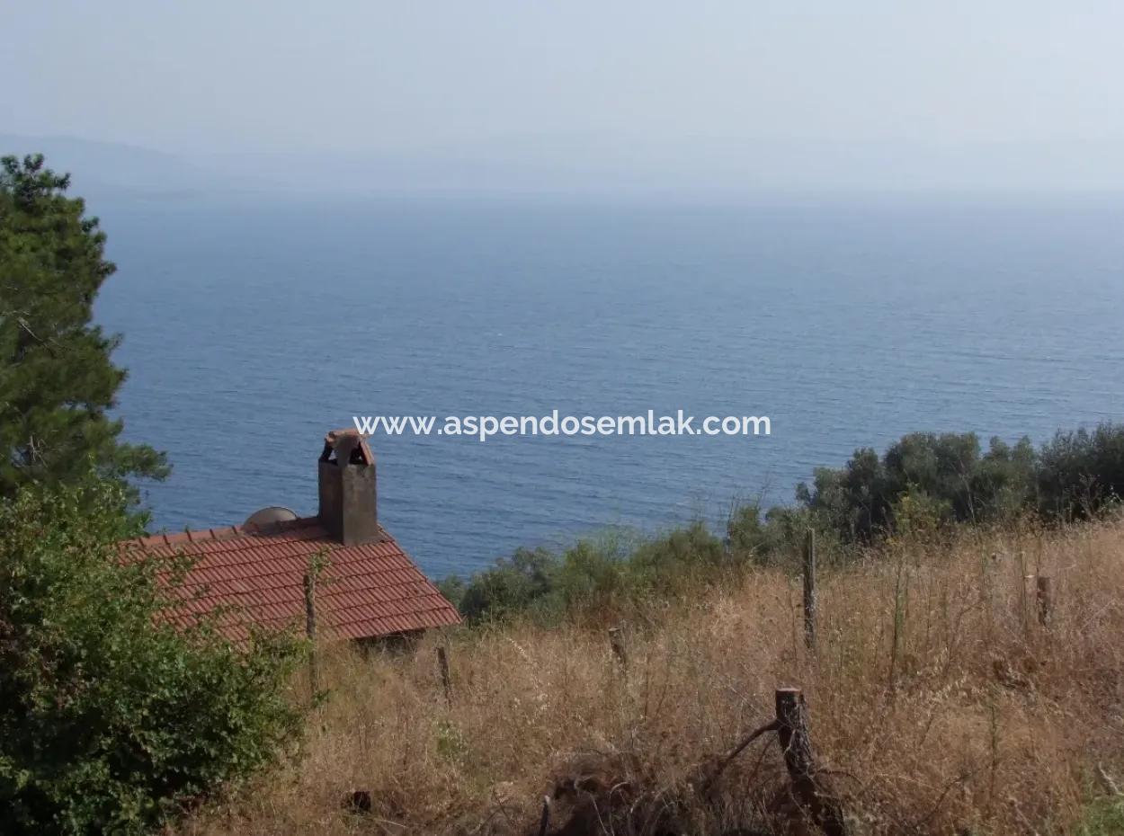 Akyaka Kandilli De Satılık Arsa 5000M2 Full Deniz Manzaralı Satılık Köy Evi Arsa