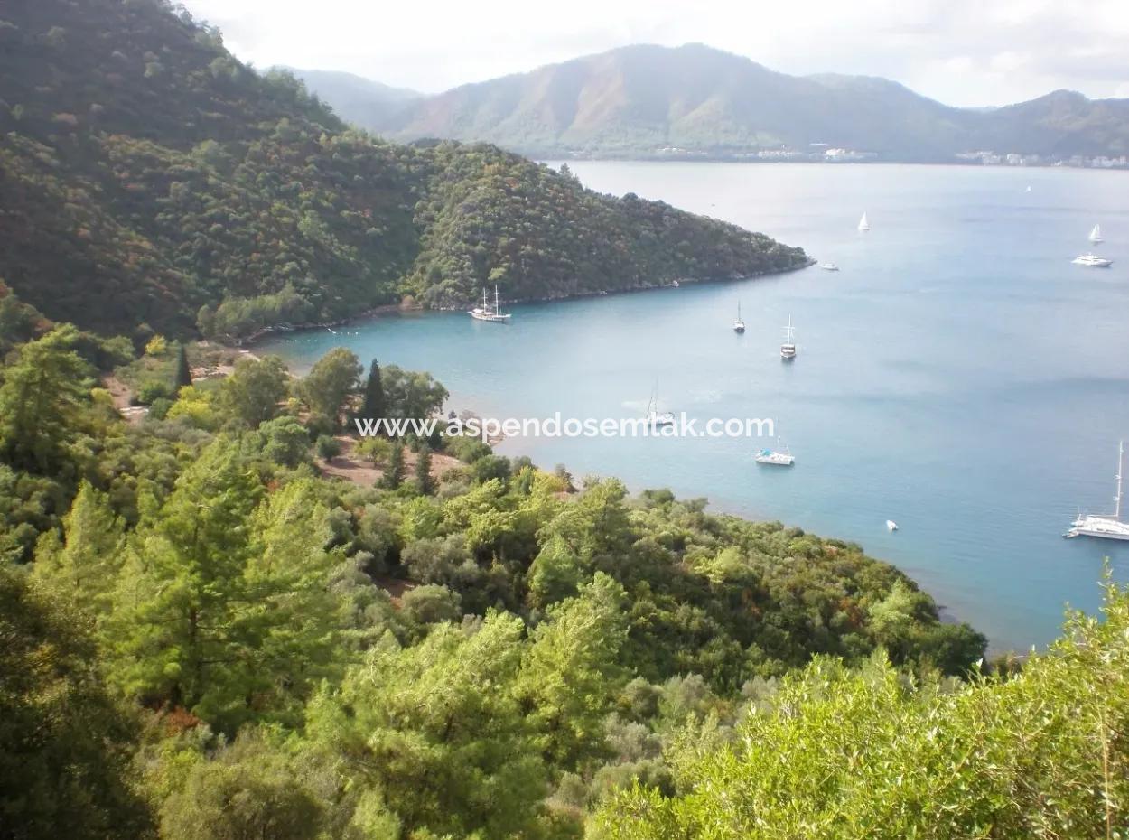 Marmaris Ada Köyde Denize Sıfır 5300M2 Satılık Arsa Marmaris Kelepir Denize Sıfır Satılık Arsa