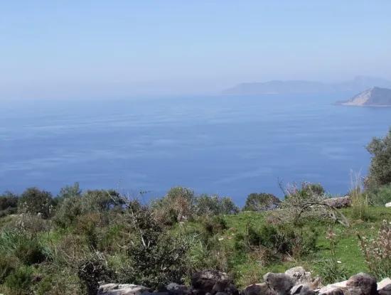 Faralya Satılık Arsa Faralya Deniz Manzaralı 11,286M2 Satılık Turizm Arsası
