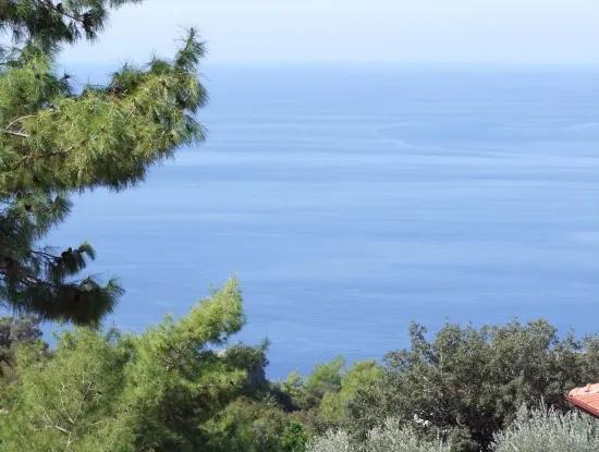 Faralya Satılık Arsa Deniz Manzaralı 500M2 Satılık İmarlı Arsa