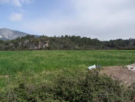 Akyaka Gökçede Satılık Arazi Denize Yakın Çiftlik İçin 21625M2 Satılık Tarla Yatırımlık Satılık Ars