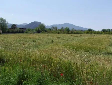 Dalyan Satılık Arsa Nar Bahçe 8,600M2 Kelepir Satılık Tarla Arsa
