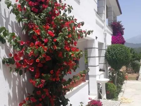 Seydikemer Satılık Müstakil Ev 2211M2 Arsa İcinde 6+2 Satılık Ev
