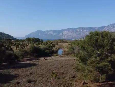 Çamlıda Satılık Arsa Arazi Marmaris Çamlıda Deniz Manzaralı 11378M2 Satılık Arsa