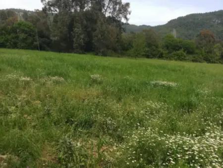 Çamlida  Satılık Arsa 11516M2 Satlık Bahçe